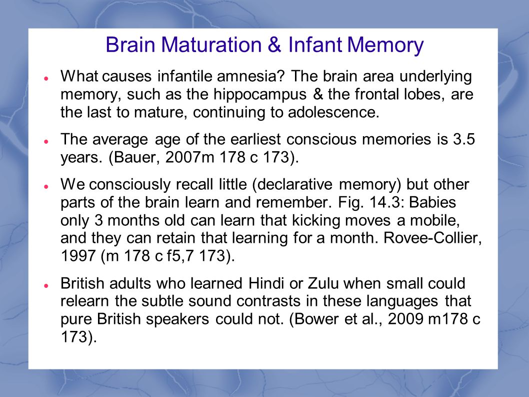Brain Maturation & Infant Memory What causes infantile amnesia.