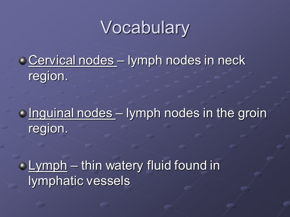 Vocabulary Cervical nodes – lymph nodes in neck region. Inguinal nodes – lymph nodes in the groin region. Lymph – thin watery fluid found in lymphatic