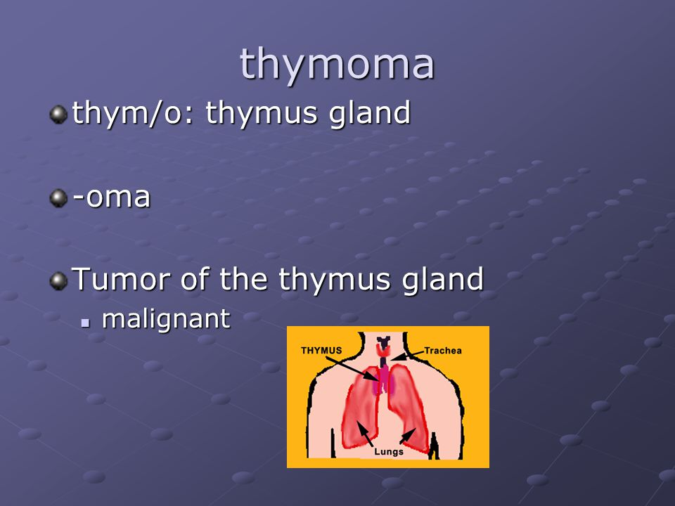thymoma thym/o: thymus gland -oma Tumor of the thymus gland malignant malignant
