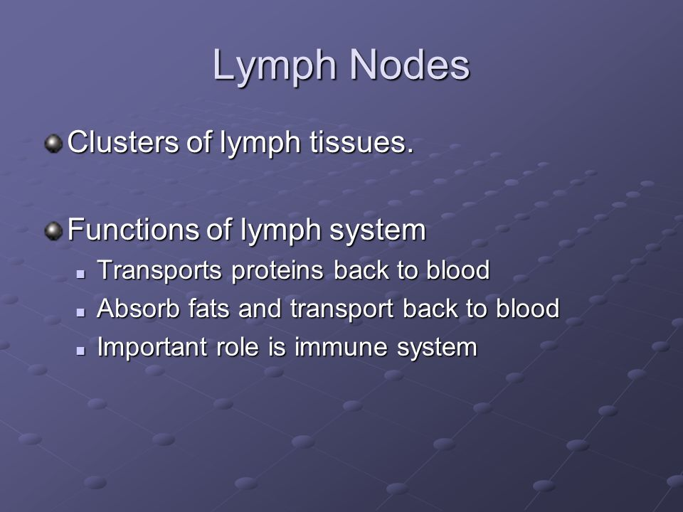 Lymph Nodes Clusters of lymph tissues.