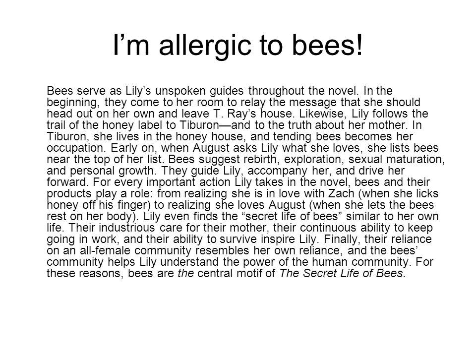 I'm allergic to bees. Bees serve as Lily's unspoken guides throughout the novel.