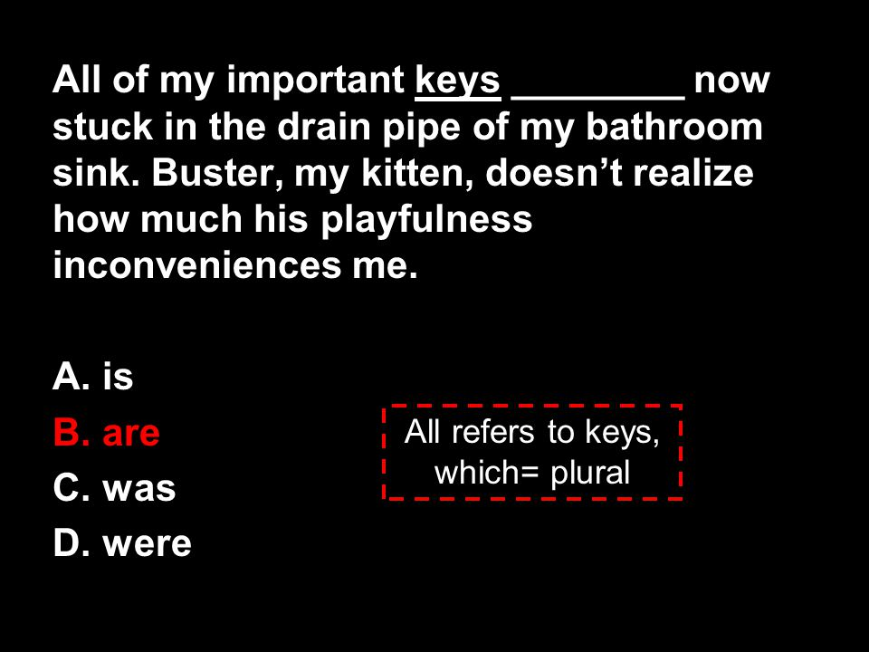 All of my important keys ________ now stuck in the drain pipe of my bathroom sink. Buster, my kitten, doesn't realize how much his playfulness inconve