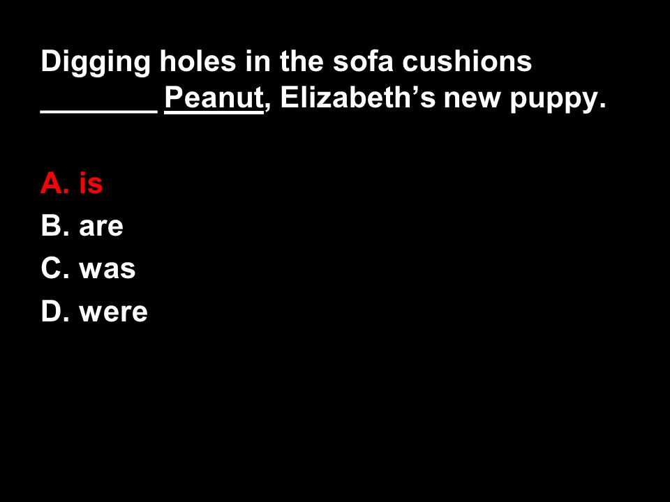Digging holes in the sofa cushions _______ Peanut, Elizabeth's new puppy. A. is B. are C. was D. were