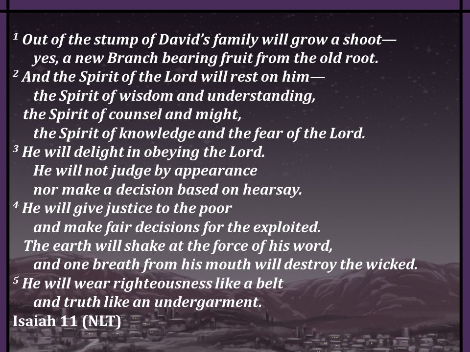 1 Out of the stump of David's family will grow a shoot— yes, a new Branch bearing fruit from the old root.