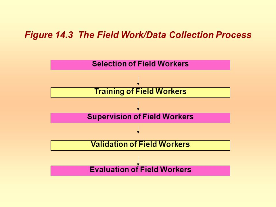 Selection of Field Workers Training of Field Workers Supervision of Field Workers Validation of Field Workers Evaluation of Field Workers Figure 14.3 The Field Work/Data Collection Process Figure 14.3 The Field Work/Data Collection ProcessFigure 14.3 The Field Work/Data Collection Process
