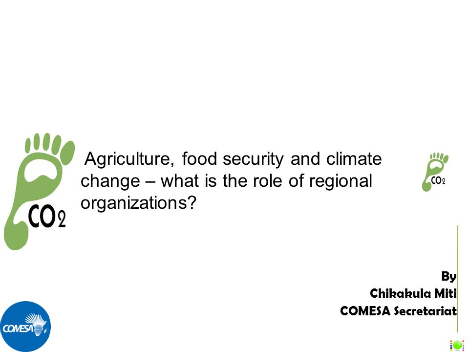 By Chikakula Miti COMESA Secretariat Agriculture, food security and climate change – what is the role of regional organizations