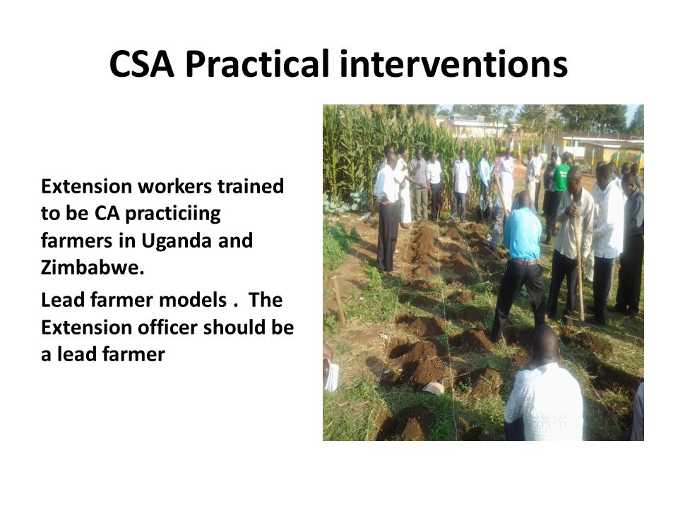CSA Practical interventions Extension workers trained to be CA practiciing farmers in Uganda and Zimbabwe.