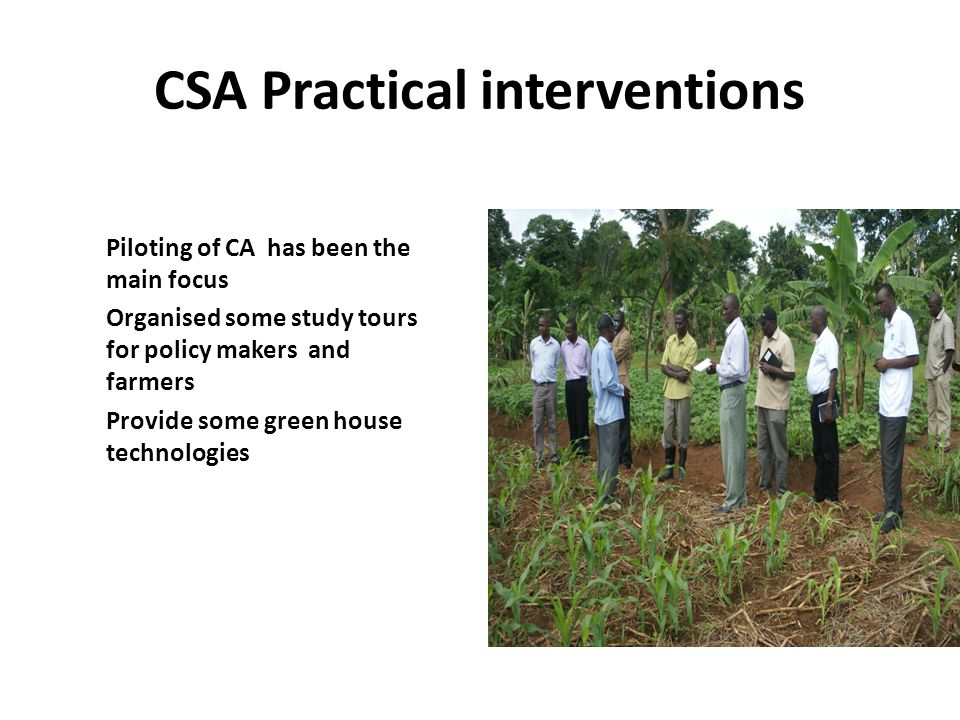 CSA Practical interventions Piloting of CA has been the main focus Organised some study tours for policy makers and farmers Provide some green house technologies