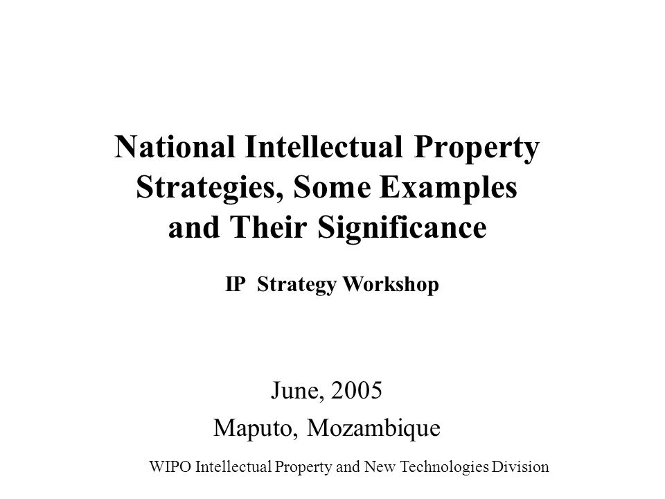 National Intellectual Property Strategies, Some Examples and Their Significance June, 2005 Maputo, Mozambique WIPO Intellectual Property and New Technologies Division IP Strategy Workshop