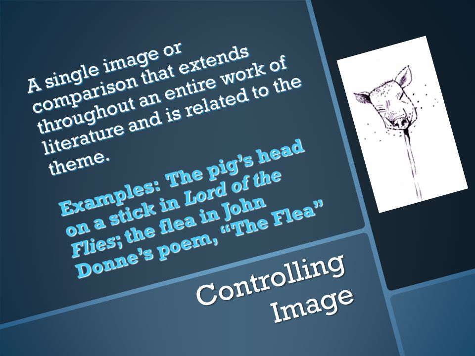 Controlling Image A single image or comparison that extends throughout an entire work of literature and is related to the theme.