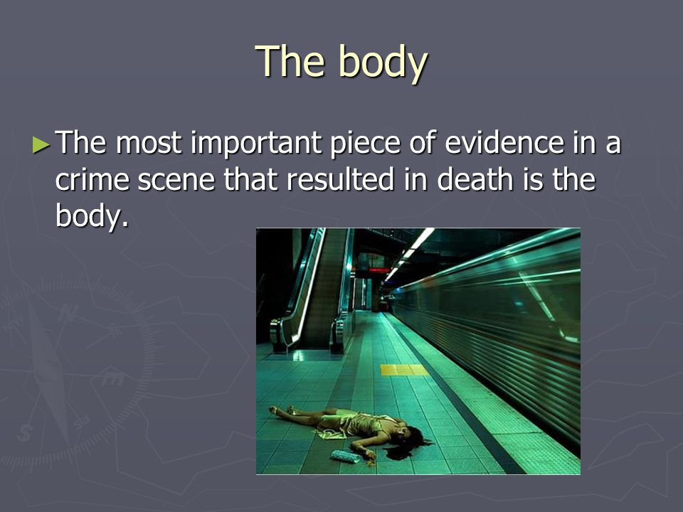 The body ► The most important piece of evidence in a crime scene that resulted in death is the body.