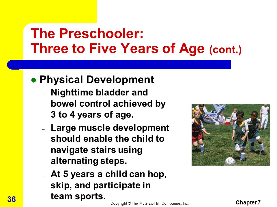 Copyright © The McGraw-Hill Companies, Inc. Chapter 7 35 The Preschooler: Three to Five Years of Age Physical Development – Height – heredity becomes
