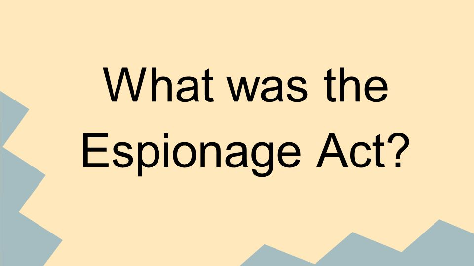 What was the Espionage Act