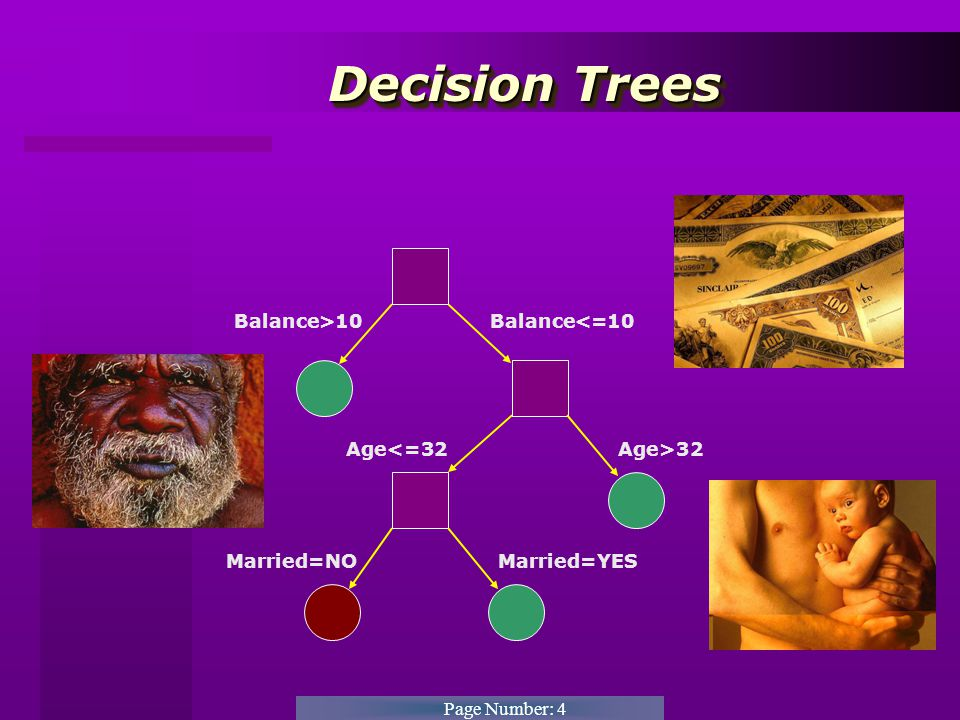Page Number: 5 Decision Trees Decision Trees