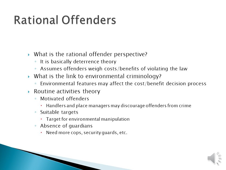  What is the rational offender perspective.