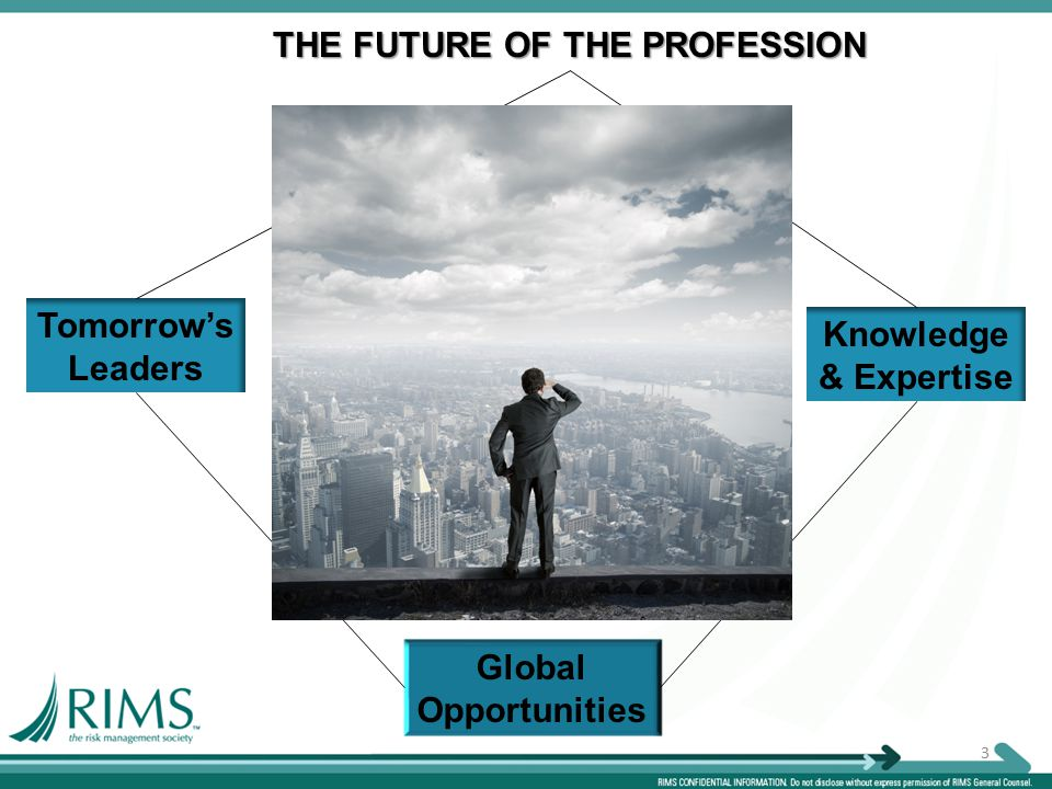 3 THE FUTURE OF THE PROFESSION