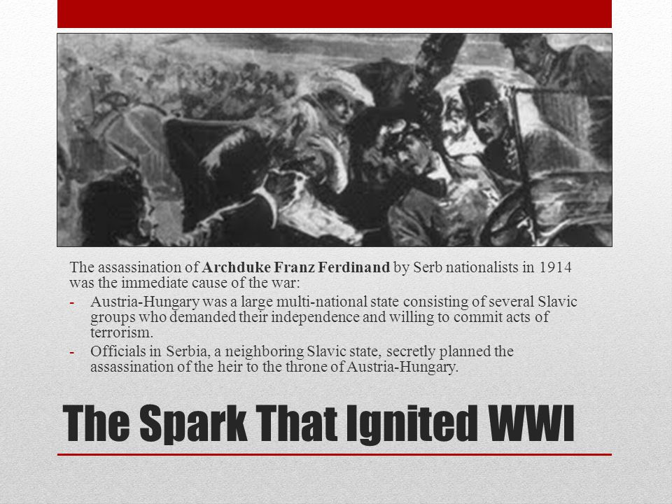 The Spark That Ignited WWI The assassination of Archduke Franz Ferdinand by Serb nationalists in 1914 was the immediate cause of the war: -Austria-Hungary was a large multi-national state consisting of several Slavic groups who demanded their independence and willing to commit acts of terrorism.