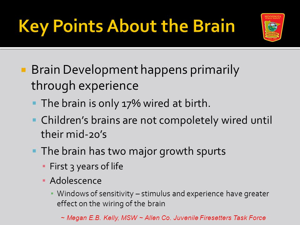 Brain Development happens primarily through experience  The brain is only 17% wired at birth.