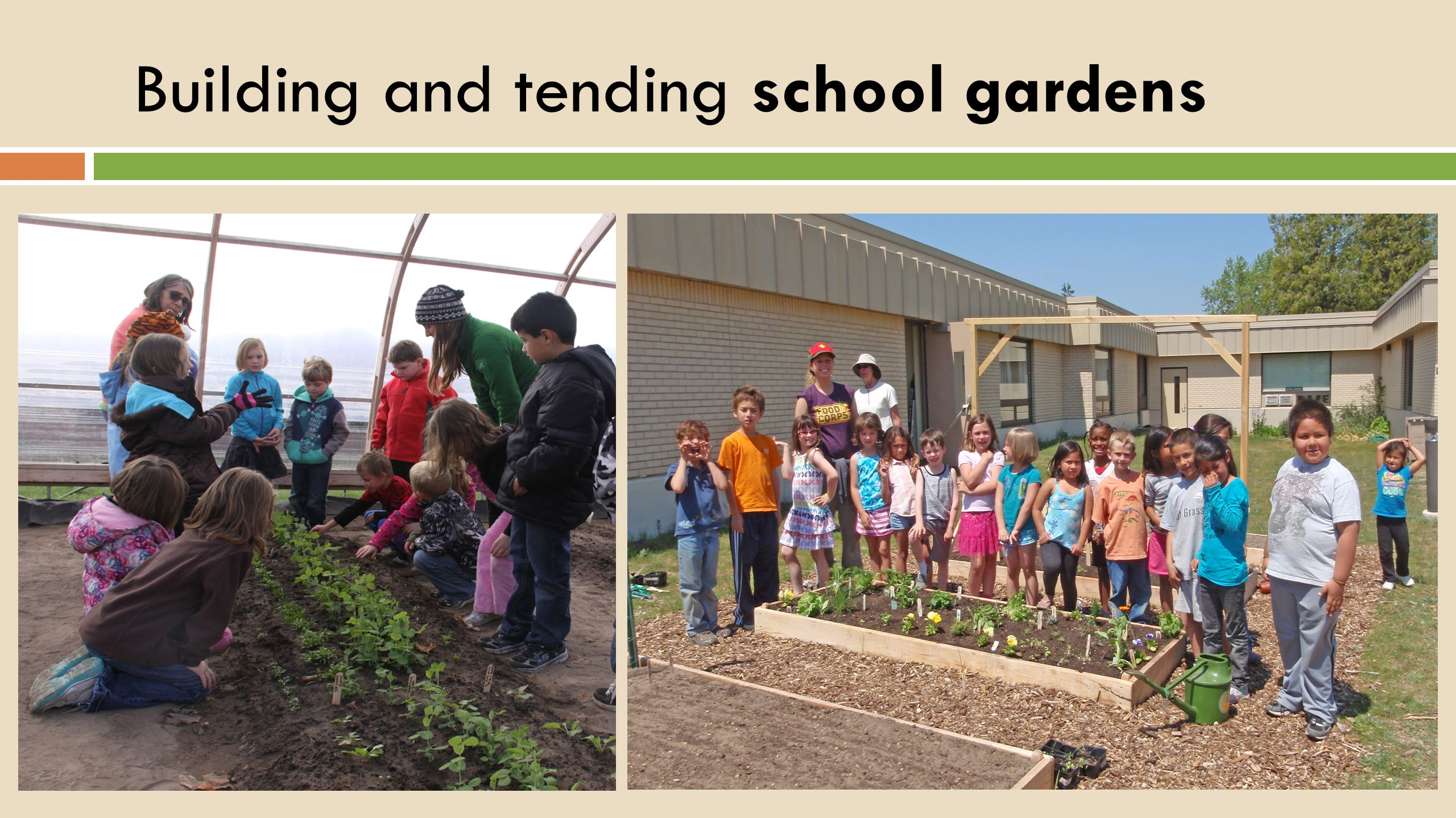 Building and tending school gardens