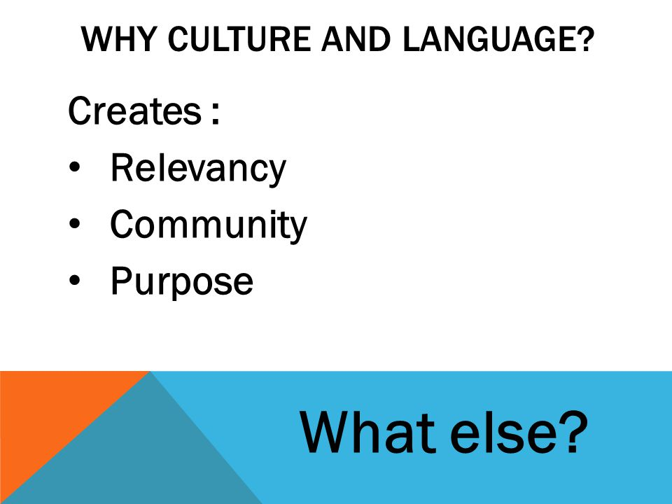 WHY CULTURE AND LANGUAGE? Creates : Relevancy Community Purpose What else?