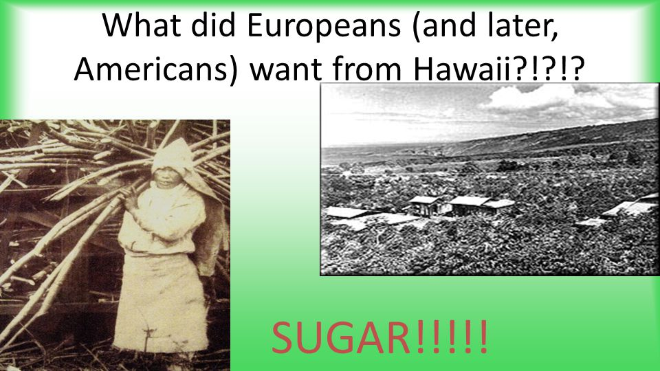 What did Europeans (and later, Americans) want from Hawaii?!?!? SUGAR!!!!!