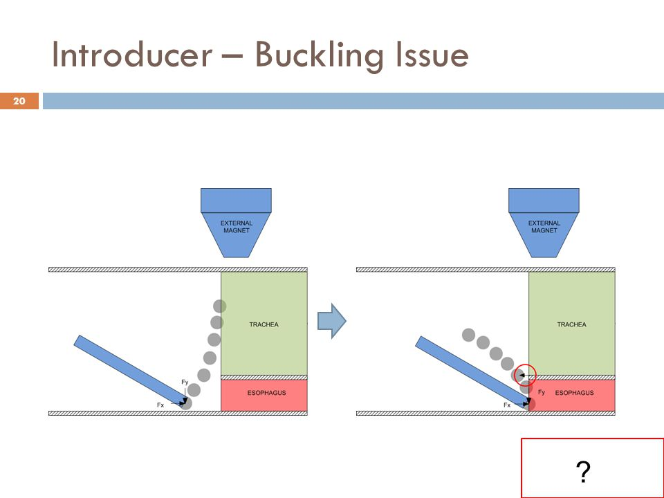 Introducer – Buckling Issue 20 ?