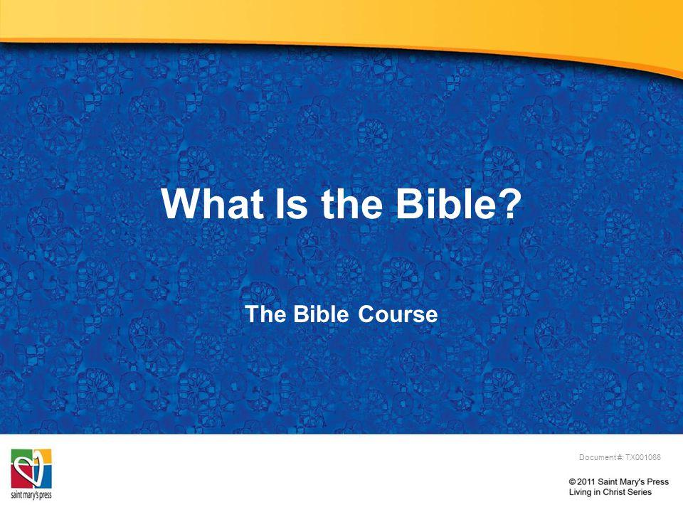 Bible (English) © Nataliia Natykach/Shutterstock.com = Biblios (Greek) Books (Literal Meaning) =