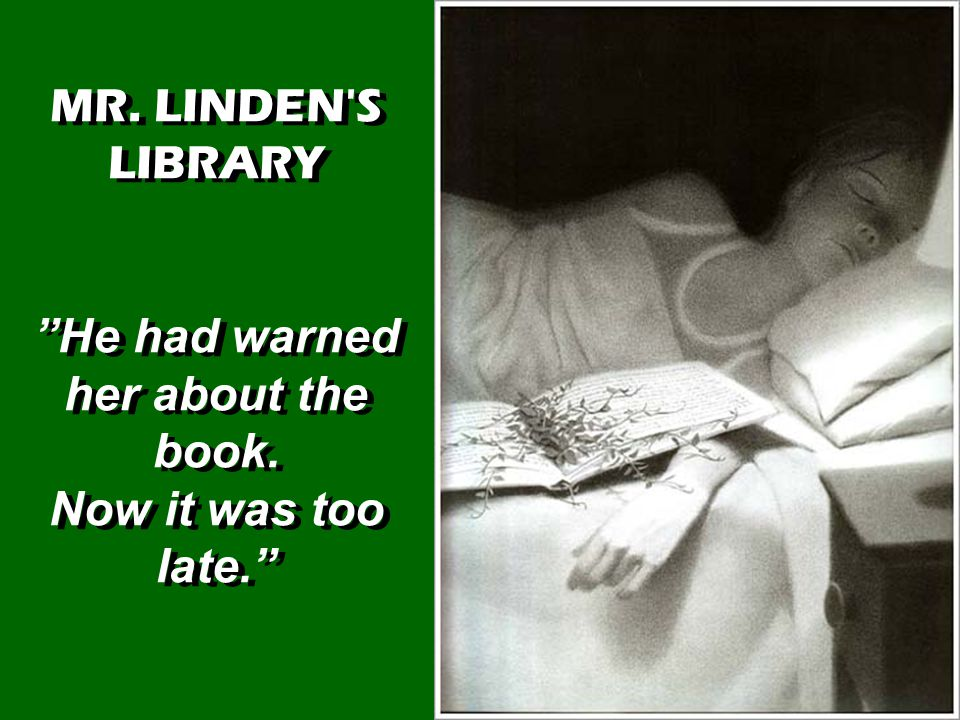MR. LINDEN S LIBRARY He had warned her about the book.