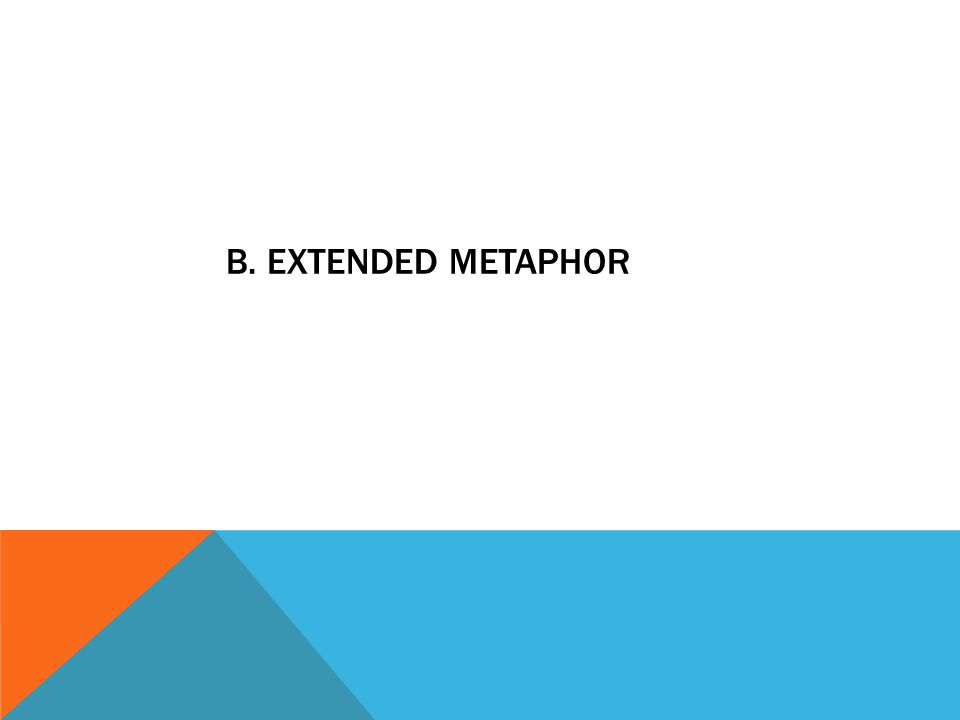 B. EXTENDED METAPHOR