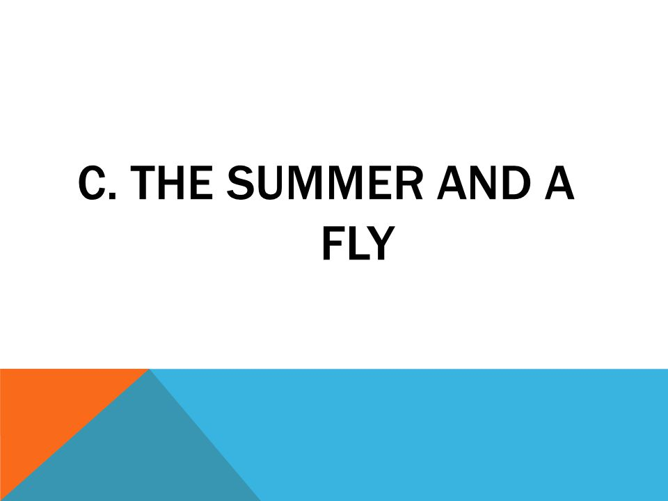 C. THE SUMMER AND A FLY