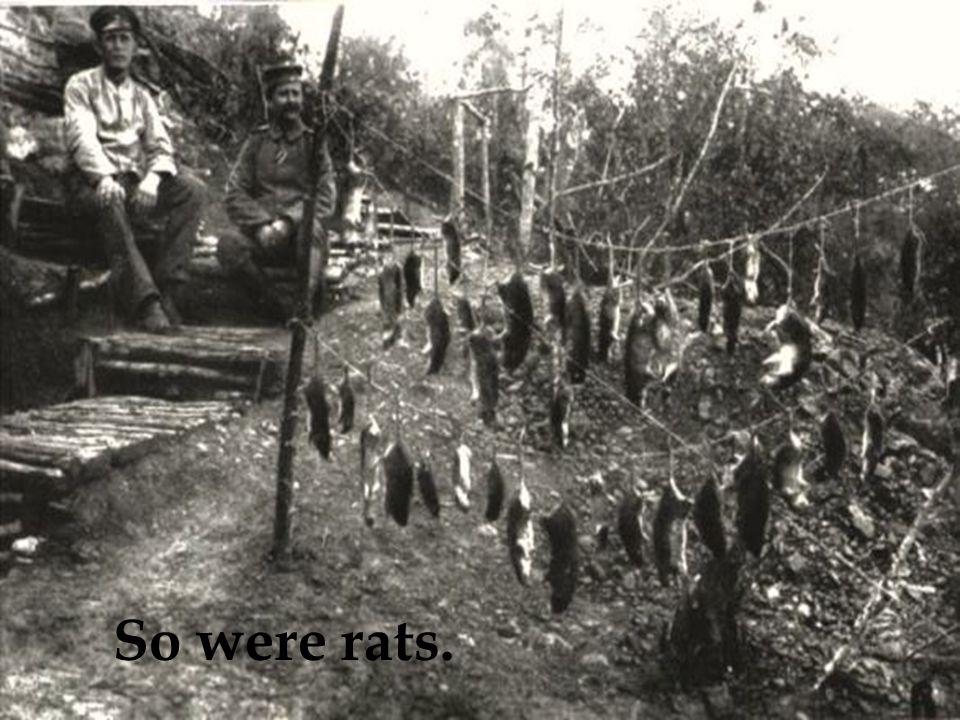 So were rats.