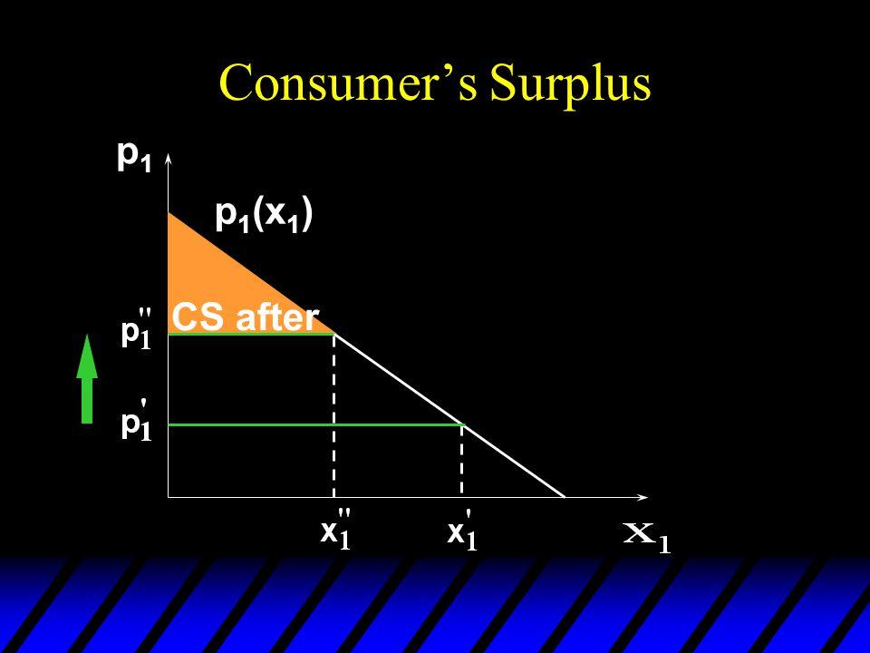 Consumer's Surplus p1p1 CS after p 1 (x 1 )