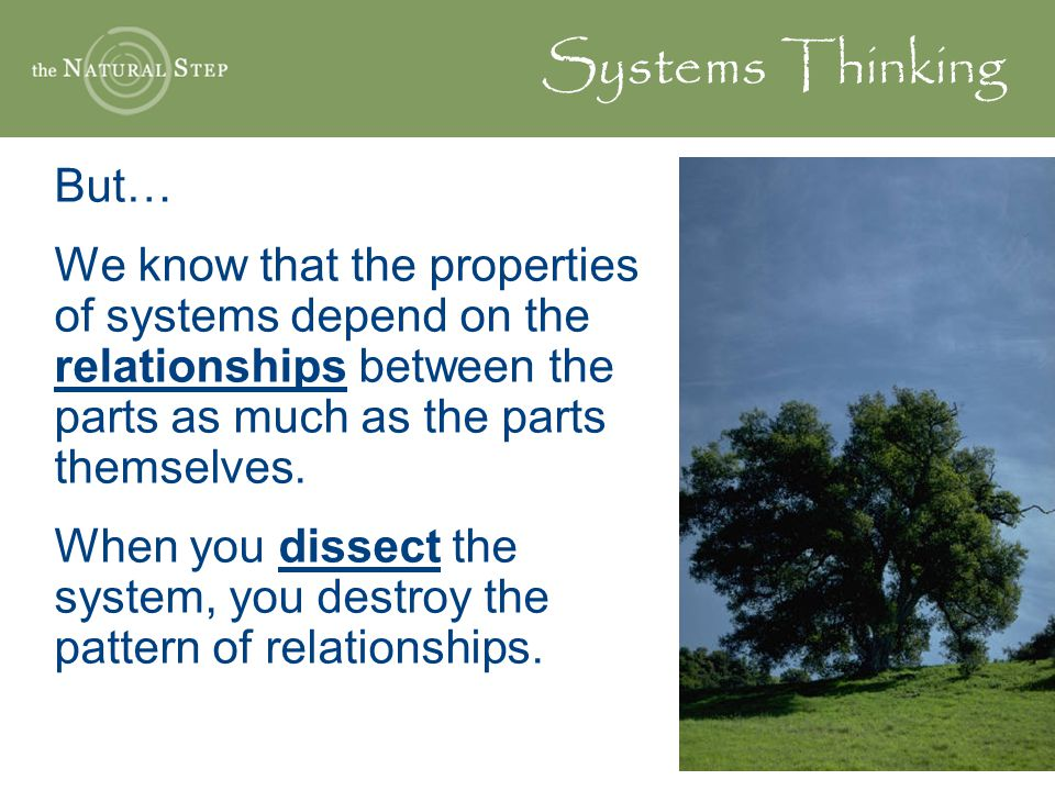 Systems Thinking But… We know that the properties of systems depend on the relationships between the parts as much as the parts themselves.