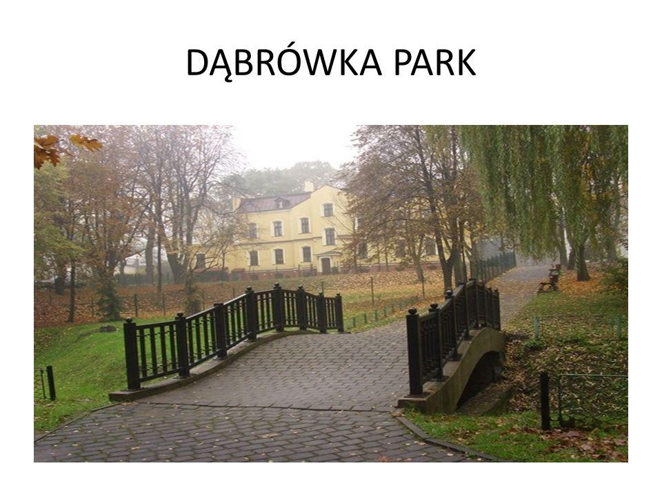 DĄBRÓWKA PARK