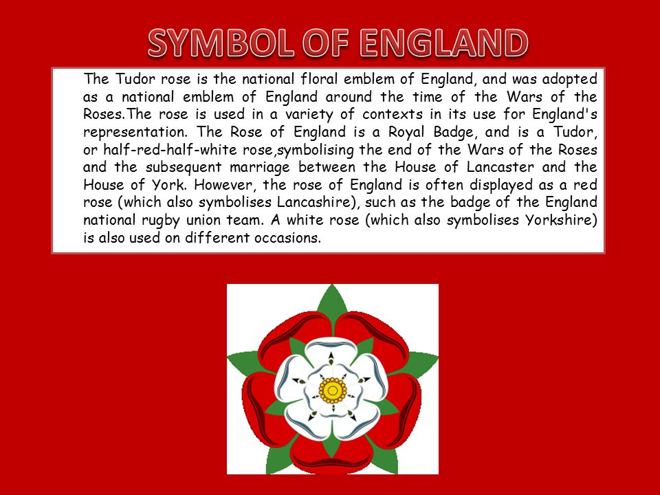 The Tudor rose is the national floral emblem of England, and was adopted as a national emblem of England around the time of the Wars of the Roses.The rose is used in a variety of contexts in its use for England s representation.