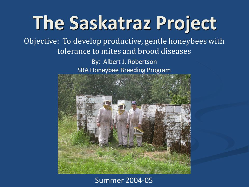 The Saskatraz Project Objective: To develop productive, gentle honeybees with tolerance to mites and brood diseases By: Albert J.