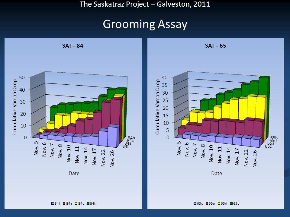 The Saskatraz Project – Galveston, 2011 Grooming Assay