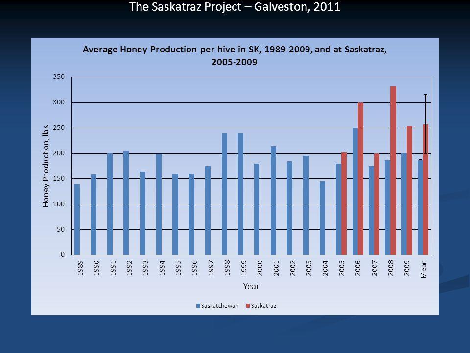 The Saskatraz Project – Galveston, 2011