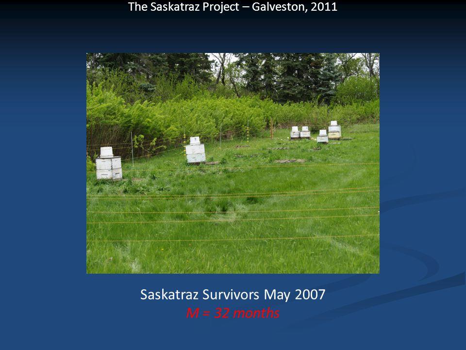 The Saskatraz Project – Galveston, 2011 Saskatraz Survivors May 2007 M = 32 months