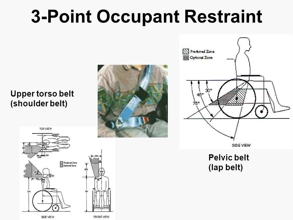 3-Point Occupant Restraint Upper torso belt (shoulder belt) Pelvic belt (lap belt)