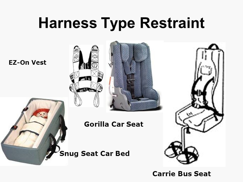 Gorilla Car Seat Carrie Bus Seat Snug Seat Car Bed Harness Type Restraint EZ-On Vest