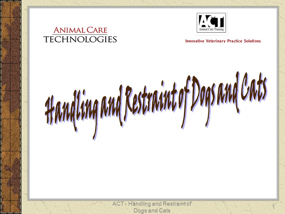 ACT - Handling and Restraint of Dogs and Cats 1