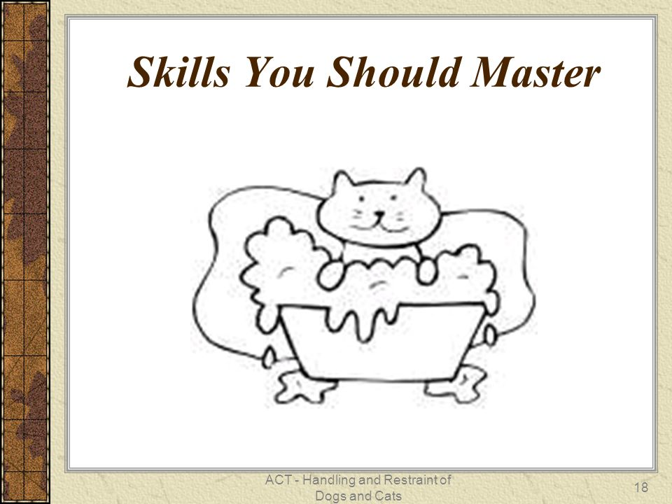 ACT - Handling and Restraint of Dogs and Cats 18 Skills You Should Master