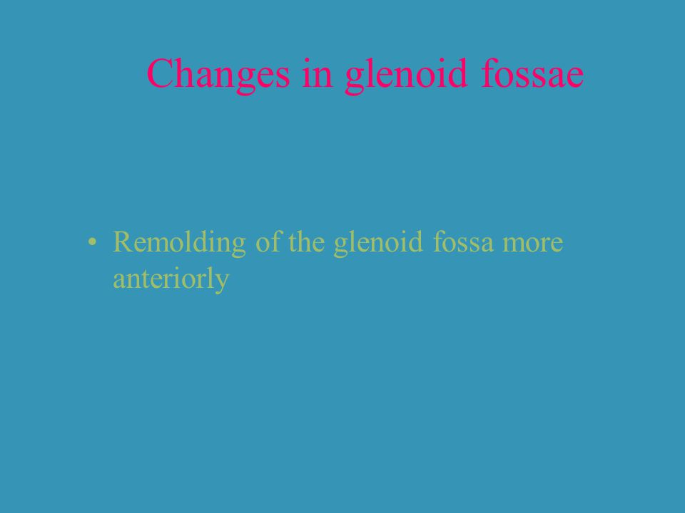 Changes in glenoid fossae Remolding of the glenoid fossa more anteriorly