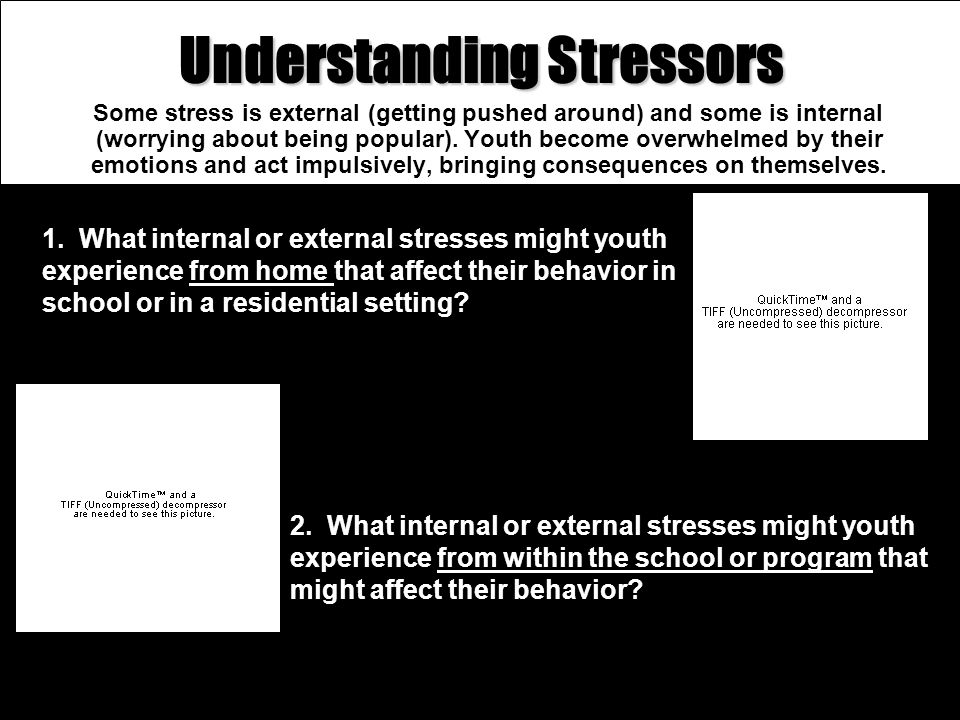 Understanding Stressors Some stress is external (getting pushed around) and some is internal (worrying about being popular). Youth become overwhelmed