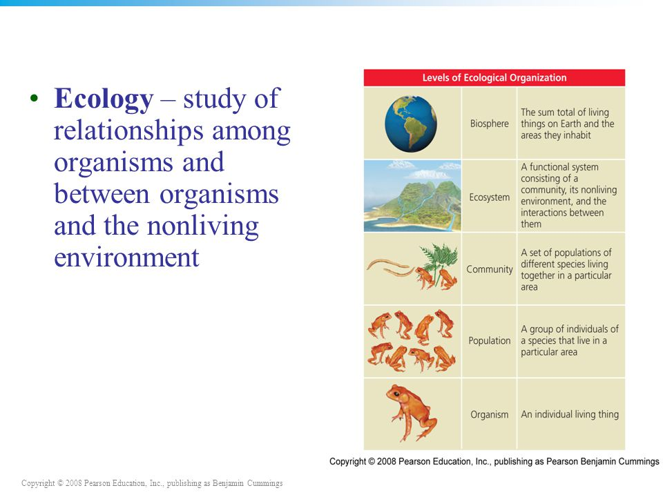 Copyright © 2008 Pearson Education, Inc., publishing as Benjamin Cummings Ecology – study of relationships among organisms and between organisms and t