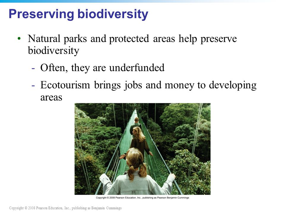 Copyright © 2008 Pearson Education, Inc., publishing as Benjamin Cummings Preserving biodiversity Natural parks and protected areas help preserve biodiversity -Often, they are underfunded -Ecotourism brings jobs and money to developing areas