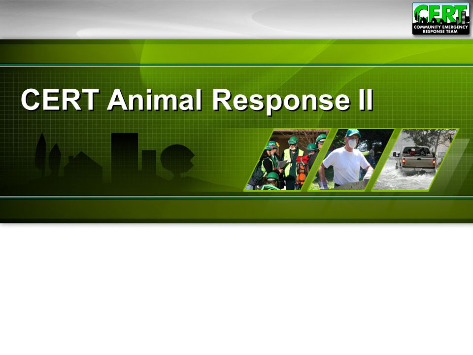 ●This topic will cover:  Cleaning and Disinfection  General Animal Care  Animal Handling  Caring for Injured Animals  Communicating with Animal Owners  Animal Identification and Documentation CERT Animal Response II21 Knowledge and Skills Needed for CERT Functions Involving Animals