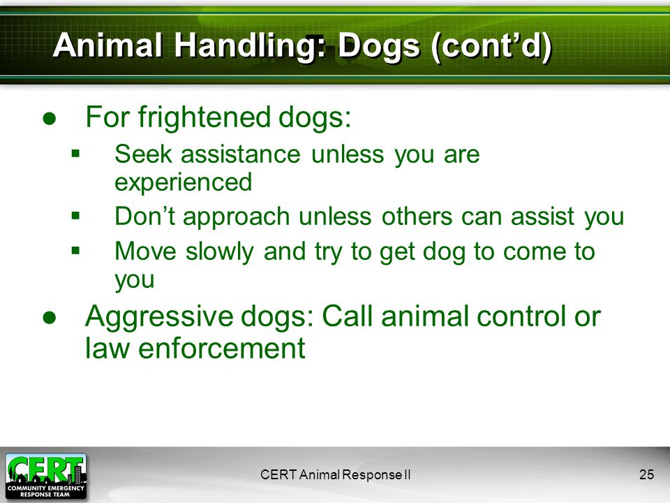 ●For frightened dogs:  Seek assistance unless you are experienced  Don't approach unless others can assist you  Move slowly and try to get dog to come to you ●Aggressive dogs: Call animal control or law enforcement CERT Animal Response II25 Animal Handling: Dogs (cont'd)