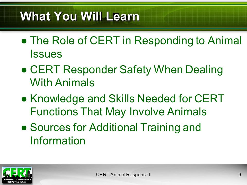 CERT Animal Response II44 ●Animals can be identified with:  Tags  Microchips  Tattoos  Ear tags  Collars  Bands on birds  Branding on livestock ●Some communities may have system for identifying dangerous animals Animal Identification